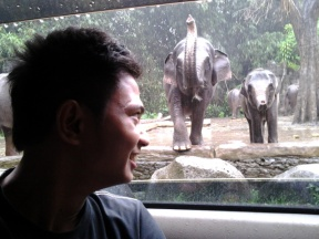 Dokumentasi Randhy ngeliat gajah untuk pertama kalinya.