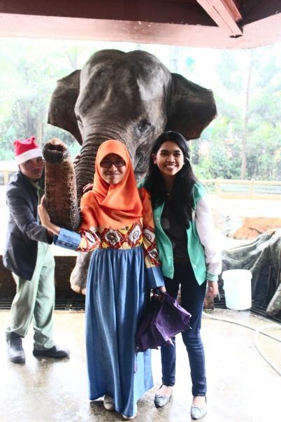 Ngga mau kalah sama Randhy, Beki feat Nia pun ikut foto sama gajah.