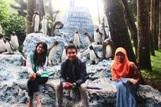 Beneran kok.. Beki pernah liat penguin di Taman Safari..