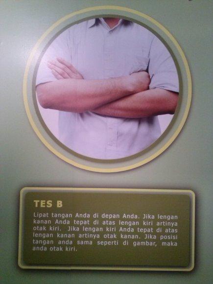tsb (21)